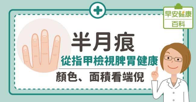 半月痕:從指甲檢視脾胃健康,顏色、面積看端倪