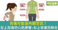 後背痛暗藏內臟警訊!左右上背痛大不同,一圖看懂背部疼痛的危險訊號