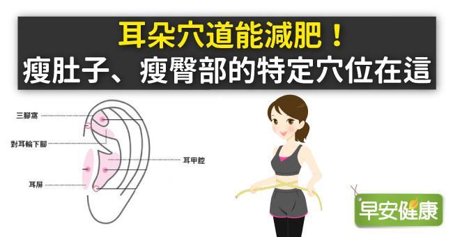耳朵穴道能減肥!瘦肚子、瘦臀部的特定穴位在這