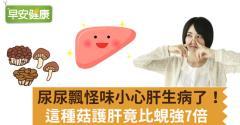 尿尿飄怪味小心肝生病了!這種菇護肝竟比蜆強7倍