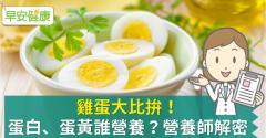 雞蛋大比拚!蛋白、蛋黃誰營養?營養師解密