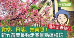 新竹、苗栗最強走春景點這樣玩,賞櫻、日落、拍美照