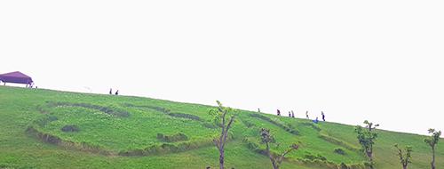 八里文化公園米飛兔
