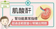 肌酸酐過高暗示腎功能異常!肌酸酐多少要洗腎?正常值是多少?看這篇就懂