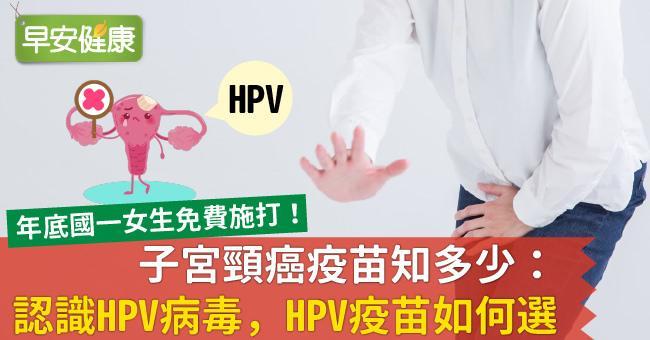 子宮頸癌疫苗知多少:認識HPV病毒,HPV疫苗如何選?