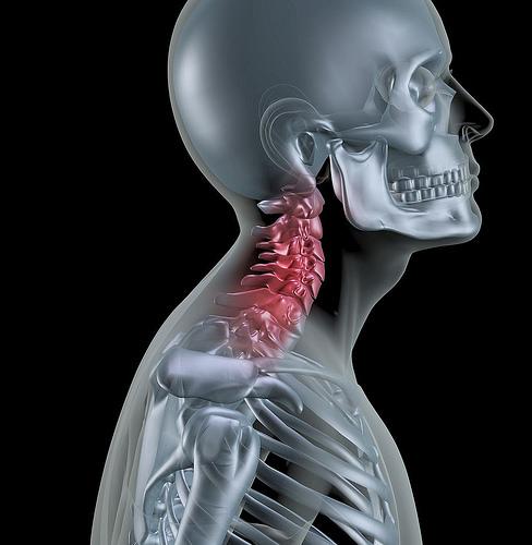 S型頸椎具有彎度、弧度