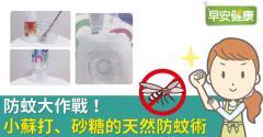 防蚊大作戰!小蘇打、砂糖的天然防蚊術