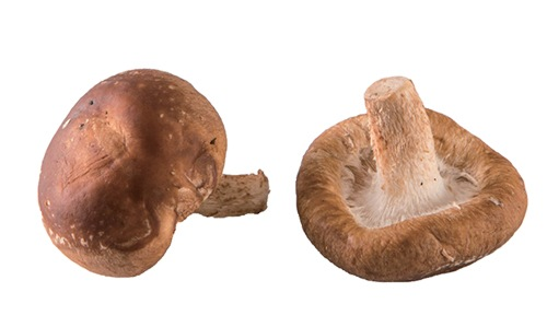 子宮肌瘤,荷爾蒙,維生素D