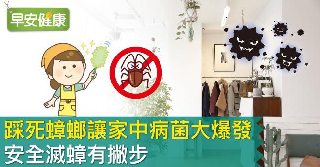 踩死蟑螂讓家中病菌大爆發!安全滅蟑有撇步