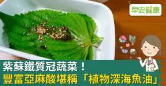 紫蘇鐵質冠蔬菜!豐富亞麻酸堪稱「植物深海魚油」