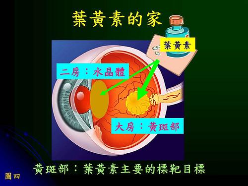 葉黃素竟會從眼睛流失!這4種人要注意黃斑部病變