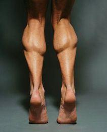 精壯的小腿