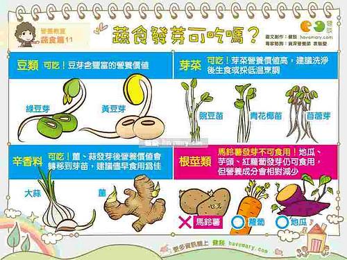 地瓜、馬鈴薯、蒜頭,發芽能吃嗎?
