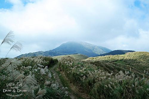 芒花步道 頂山.石梯嶺步道