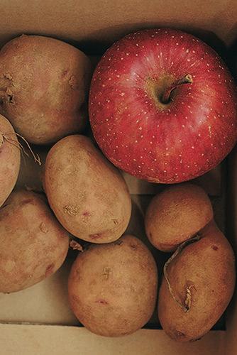 馬鈴薯保鮮:放入蘋果,預防馬鈴薯發芽