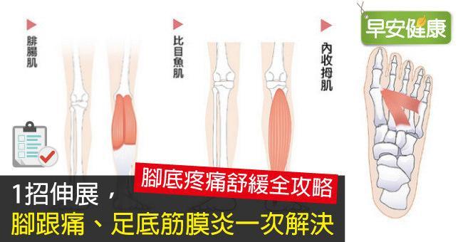 1招伸展,腳跟痛、足底筋膜炎一次解決