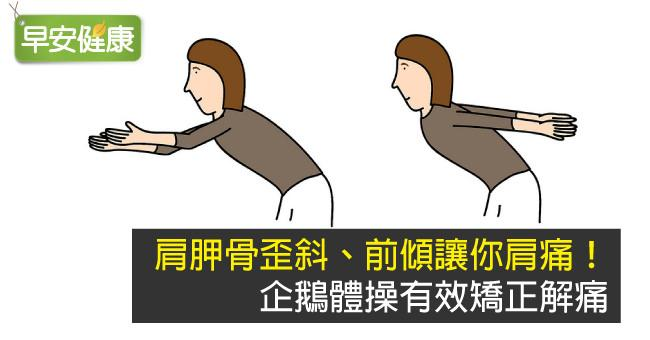肩胛骨歪斜、前傾讓你肩痛!企鵝體操有效矯正解痛