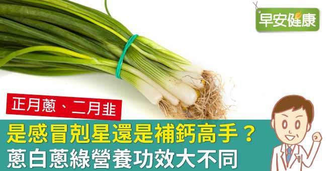 是感冒剋星還是補鈣高手?蔥白蔥綠營養功效大不同