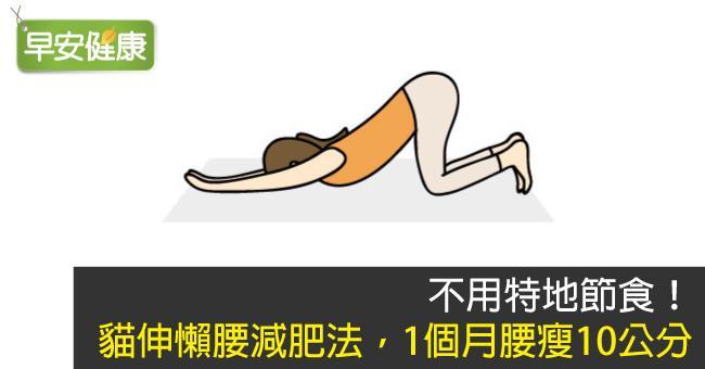 不用特地節食!貓伸懶腰減肥法,1個月腰瘦10公分
