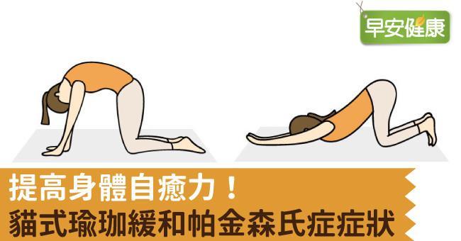 提高身體自癒力!貓式瑜珈緩和帕金森氏症症狀