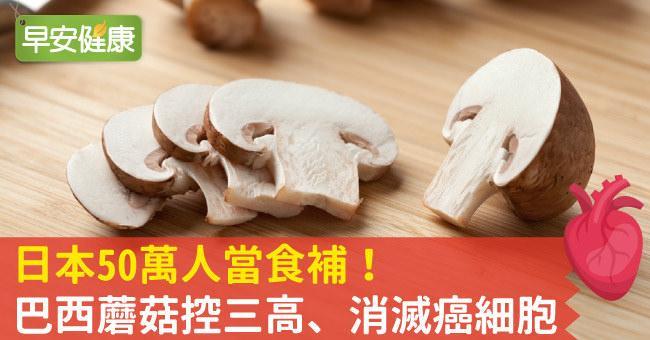 日本50萬人當食補!巴西蘑菇控三高、消滅癌細胞