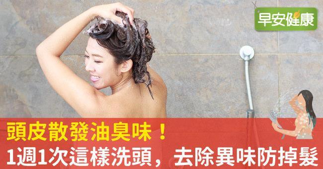 頭皮散發油臭味!1週1次這樣洗頭,去除異味防掉髮