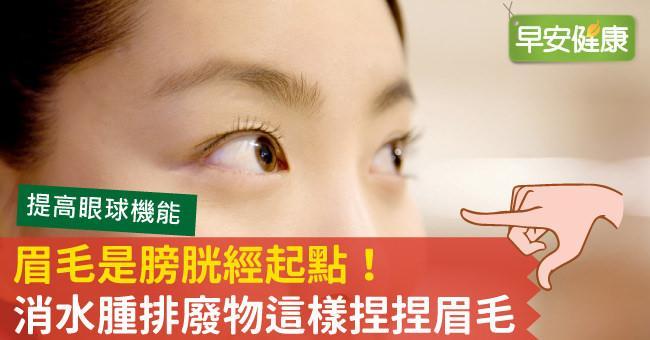 眉毛是膀胱經起點!消水腫排廢物這樣捏捏眉毛