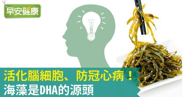 活化腦細胞、防冠心病!海藻是DHA的源頭