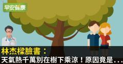 林杰樑臉書:天氣熱千萬別在樹下乘涼!原因竟是...