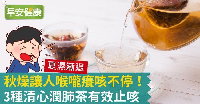 秋燥讓人喉嚨癢咳不停!3種清心潤肺茶有效止咳