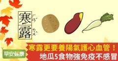 寒露更要養陽氣護心血管!地瓜5食物強免疫不感冒