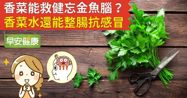 香菜能救健忘金魚腦?香菜水還能整腸抗感冒!