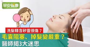 洗髮精含矽靈很傷?毛囊阻塞、掉髮變嚴重?醫師揭3大迷思