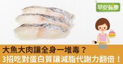 大魚大肉讓全身一堆毒?3招吃對蛋白質讓減脂代謝力翻倍!