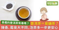 普洱茶=臭舖茶?陳香、霉臭大不同,泡茶多一步更安心