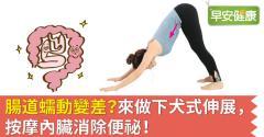 腸道蠕動變差?來做下犬式伸展,按摩內臟消除便祕!