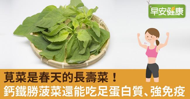 莧菜是春天的長壽菜!鈣鐵勝菠菜還能吃足蛋白質、強免疫