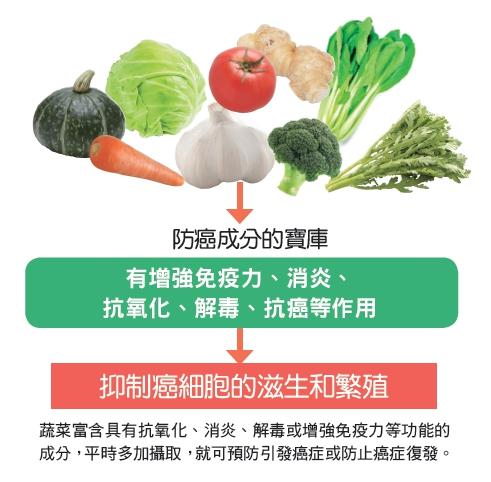 蔬菜富含具有抗氧化、消炎、解毒或增強免疫力等功能的成分,平時多家攝取,就可預防引發癌症或防止癌症復發。