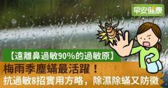 梅雨季塵蟎最活躍!抗過敏8招實用方略,除濕除蟎又防黴
