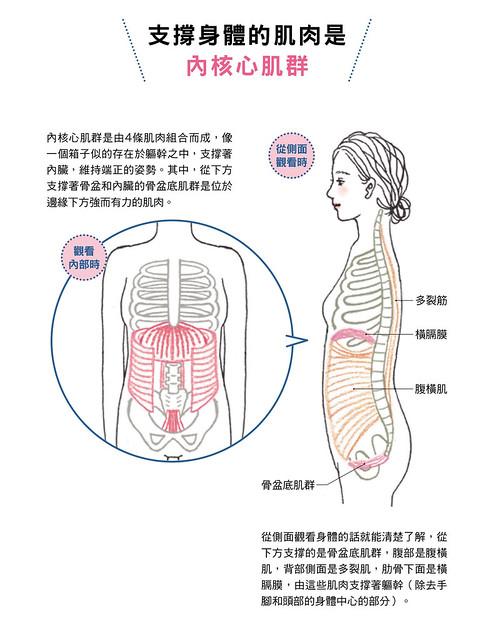 支撐身體的肌肉是內核心肌群