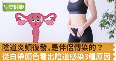 陰道炎頻復發,是伴侶傳染的?從白帶顏色看出陰道感染3種原因