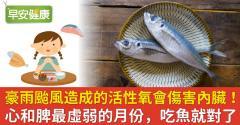 豪雨颱風造成的活性氧會傷害內臟!心和脾最虛弱的月份,吃魚就對了
