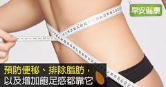 預防便秘、排除脂肪,以及增加飽足感都靠它