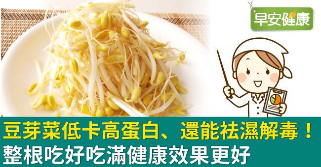 豆芽菜低卡高蛋白、還能袪濕解毒!整根吃好吃滿健康效果更好