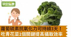 蘿蔔硫素抗氧化力可持續3天!吃青花菜1個關鍵提高攝取效率