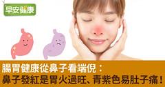腸胃健康從鼻子看端倪:鼻子發紅是胃火過旺、青紫色易肚子痛!