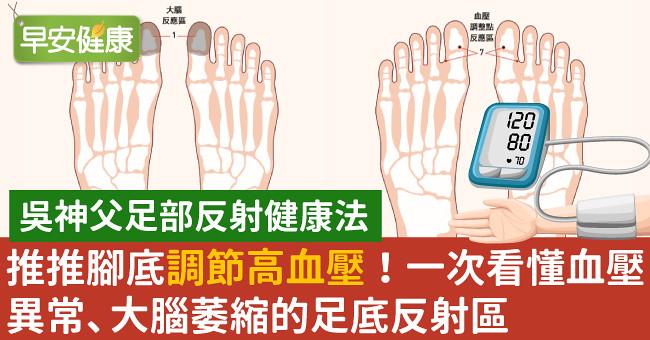 推推腳底調節高血壓!一次看懂血壓異常、大腦萎縮的足底反射區