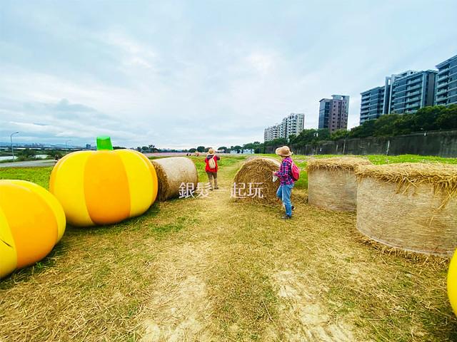 巨大南瓜及稻草
