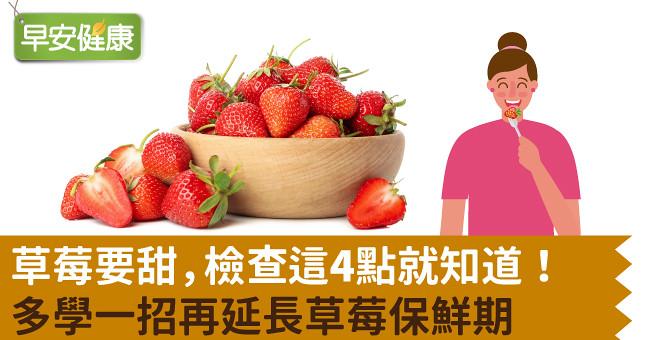 草莓要甜,檢查這4點就知道!多學一招再延長草莓保鮮期