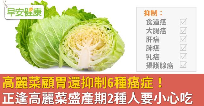 高麗菜顧胃還抑制6種癌症!正逢高麗菜盛產期2種人要小心吃